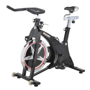 Bicicleta Spinning DKN Racer Pro